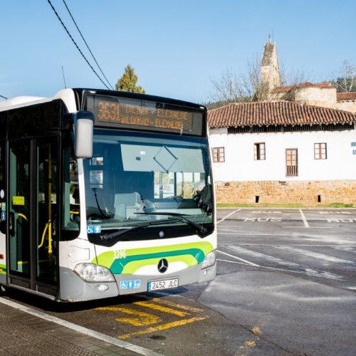 Auzoak lotuko dituen autobusa